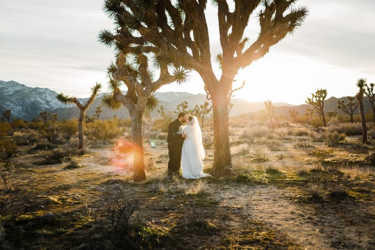Elopement Joshua tree eloping in Joshua tree how to elope intimate wedding minimony micro wedding